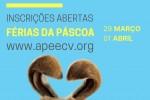 pop-up ferias pascoa